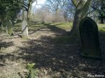 70-moorgate-cemetery-rotherham-old-t-25-19-03-10-1