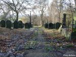 cemetery-high-street-rawmarsh-30-11-08-2