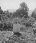 30 - Tennessee (Beryl M. Mollekin)