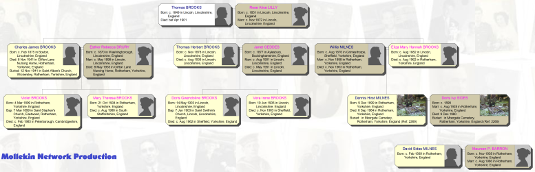 Truncated Brooks Family Tree